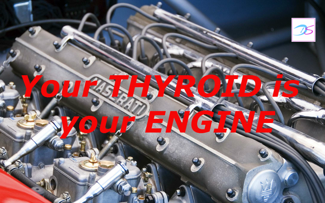 Your thyroid is your engine – if it's running slow, so are you!
